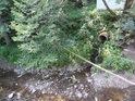Vyústění z kanalizační trubky do toku Tiché Orlice nedaleko lomu u obce Mistrovice.