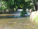 Jez na Tiché Orlici v Jablonném nad soutokem s Jamenským potokem.