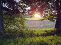 Vycházející Slunce pod větvemi stromů v levobřežní nivě Tiché Orlice u Rothovky.