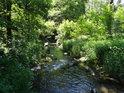 Krátký úsek Tiché Orlice nad Mladkovem, kde teče řeka směrem na jih.