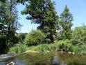 Bezejmenný pravobřežní přítok Tiché Orlice ústí do řeky nad jezem v Mladkově.