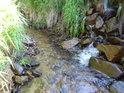 To co se zdá být levostranným přítokem Tiché Orlice, to je odtok z místního rybníka v obci Horní Orlice.