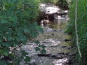 Odraz slunečních paprsků v horním toku Tiché Orlice.