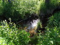 Odlesk slunečních paprsků v tůňce na řece Tichá Orlice.