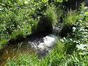 Splav na Tiché Orlici, takový malý jízek, co činí vodu o něco živější.