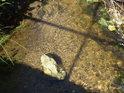Osamělý kámen v korytě Tiché Orlice v obci Dolní Orlice.