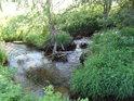 Soutok Tiché Orlice a Suchého potoka. Suchý potok není prázdné koryto, ale svůj název si zaslouží proto, že pramení pod Suchým vrchem.