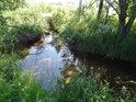 Řeka Tichá Orlice od pramene po Lichkov