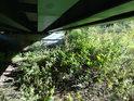 Pod železničním mostem přes Tichou Orlici nad osadou Bezpráví.
