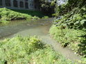 Loukotnický potok se stal stokou a přivádí znečištěnou vodu do Tiché Orlice v Brandýse nad Orlicí.